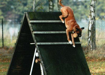 Eddy-Kletterwand